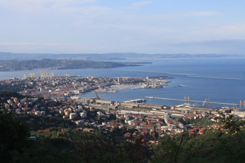 Hillside view of Trieste harbour
